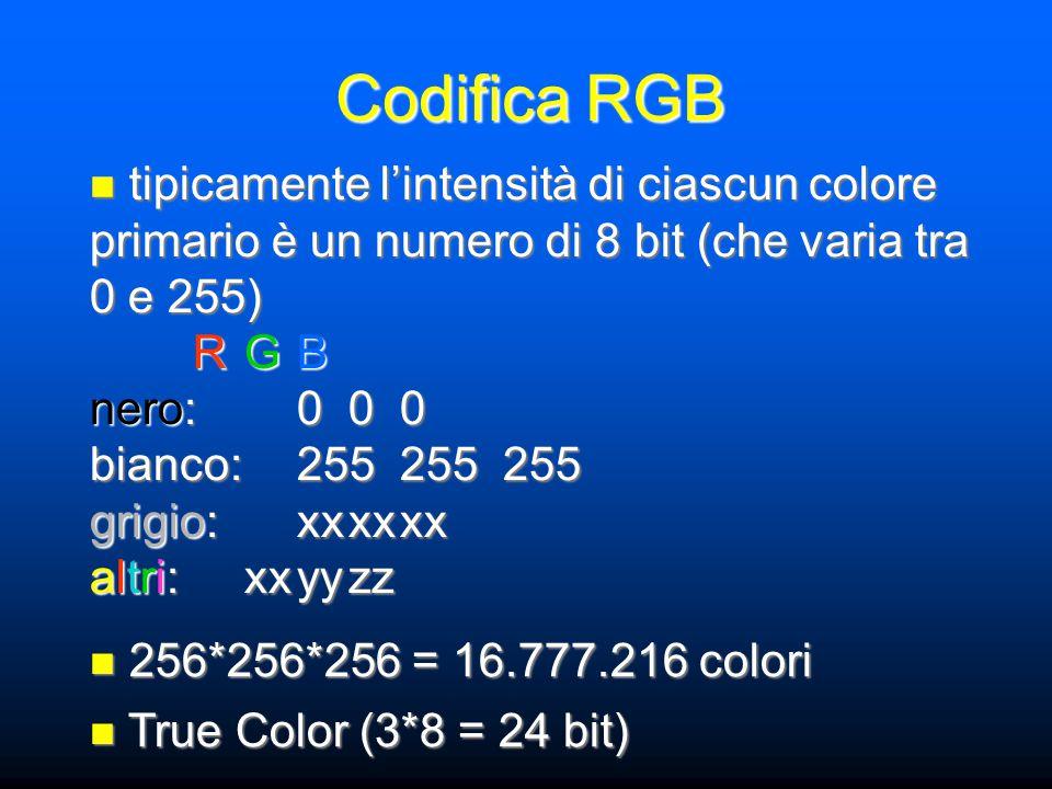 tipicamente l'intensità di ciascun colore primario è un numero di 8 bit (che varia tra 0 e 255) tipicamente l'intensità di ciascun colore primario è un numero di 8 bit (che varia tra 0 e 255) RGB nero:000 bianco:255255255 grigio:xxxxxx altri:xxyyzz 256*256*256 = 16.777.216 colori 256*256*256 = 16.777.216 colori True Color (3*8 = 24 bit) True Color (3*8 = 24 bit)