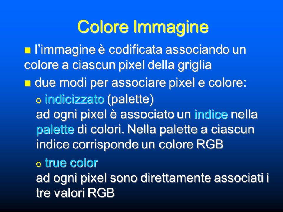 Colore Immagine l'immagine è codificata associando un colore a ciascun pixel della griglia l'immagine è codificata associando un colore a ciascun pixel della griglia due modi per associare pixel e colore: due modi per associare pixel e colore: o indicizzato (palette) ad ogni pixel è associato un indice nella palette di colori.