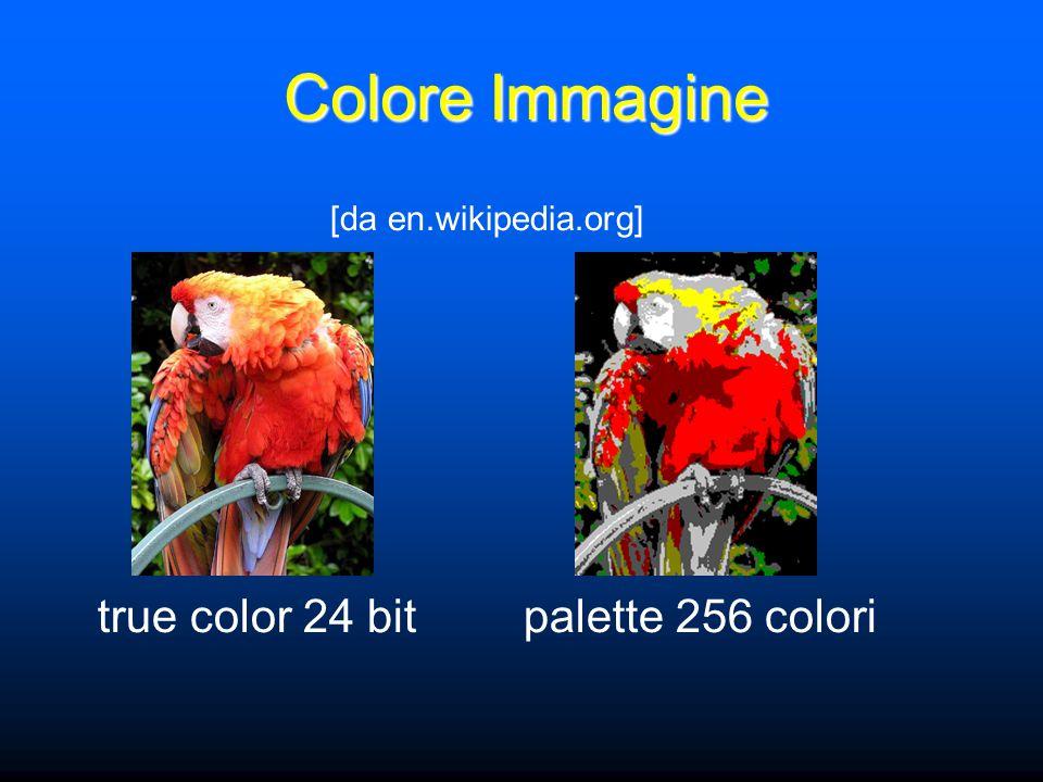Colore Immagine [da en.wikipedia.org] true color 24 bitpalette 256 colori