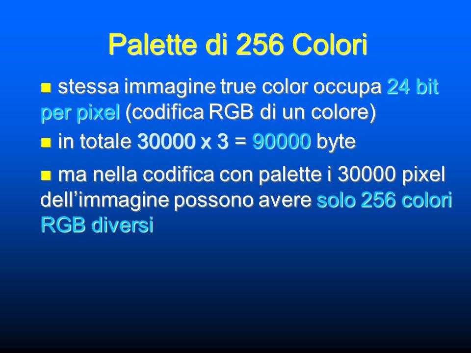 stessa immagine true color occupa 24 bit per pixel (codifica RGB di un colore) stessa immagine true color occupa 24 bit per pixel (codifica RGB di un colore) in totale 30000 x 3 = 90000 byte in totale 30000 x 3 = 90000 byte ma nella codifica con palette i 30000 pixel dell'immagine possono avere solo 256 colori RGB diversi ma nella codifica con palette i 30000 pixel dell'immagine possono avere solo 256 colori RGB diversi Palette di 256 Colori