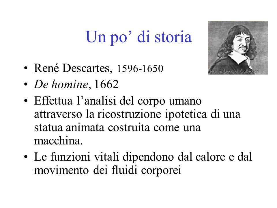 Un po' di storia René Descartes, 1596-1650 De homine, 1662 Effettua l'analisi del corpo umano attraverso la ricostruzione ipotetica di una statua anim
