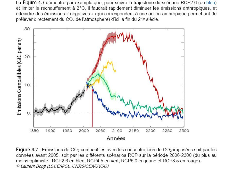 Bilancio C cumulato positivo a partire dal 2038 Emissioni certeRecuperi incerti e tardivi