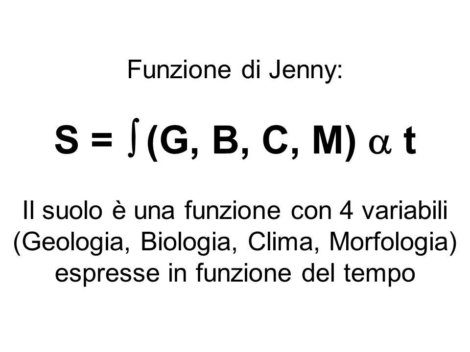 Funzione di Jenny: S =  (G, B, C, M)  t Il suolo è una funzione con 4 variabili (Geologia, Biologia, Clima, Morfologia) espresse in funzione del tem