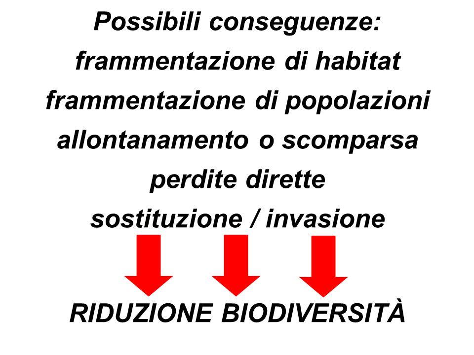 Possibili conseguenze: frammentazione di habitat frammentazione di popolazioni allontanamento o scomparsa perdite dirette sostituzione / invasione RID