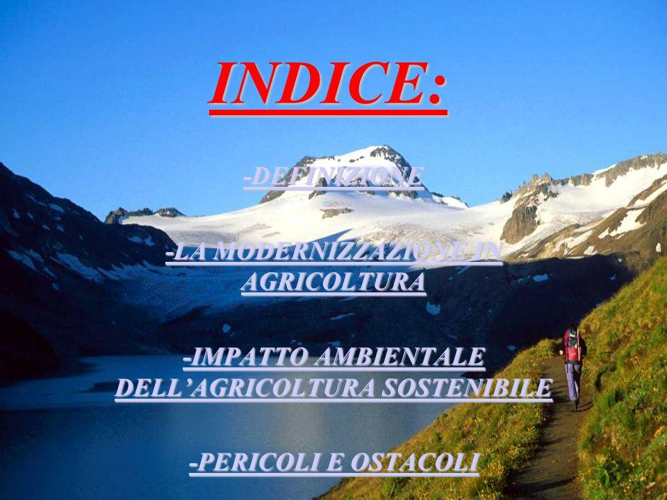 INDICE: -DEFINIZIONE -LA MODERNIZZAZIONE IN AGRICOLTURA -LA MODERNIZZAZIONE IN AGRICOLTURA -IMPATTO AMBIENTALE DELL'AGRICOLTURA SOSTENIBILE -IMPATTO AMBIENTALE DELL'AGRICOLTURA SOSTENIBILE -PERICOLI E OSTACOLI -PERICOLI E OSTACOLI
