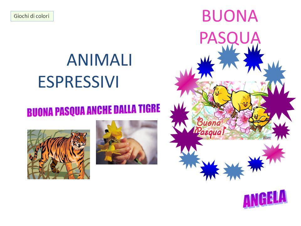 BUONA PASQUA ANIMALI ESPRESSIVI Giochi di colori