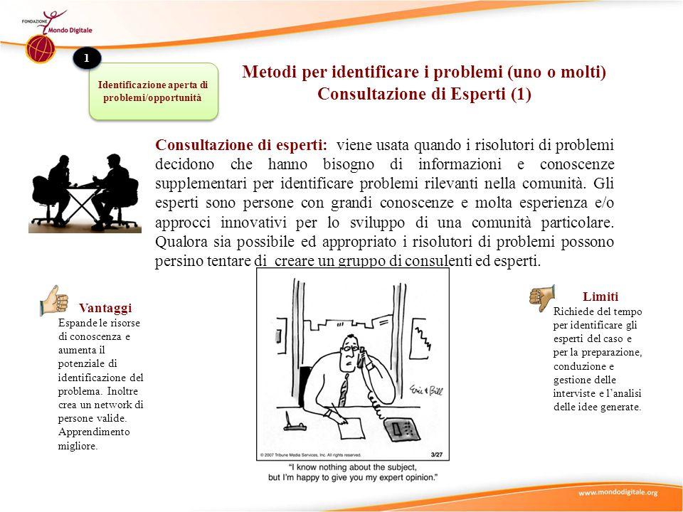 Consultazione di esperti: viene usata quando i risolutori di problemi decidono che hanno bisogno di informazioni e conoscenze supplementari per identi