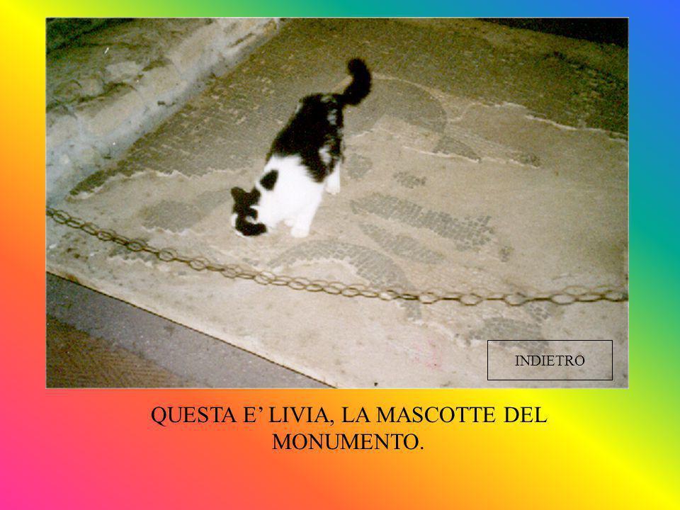 QUESTA E' LIVIA, LA MASCOTTE DEL MONUMENTO. INDIETRO