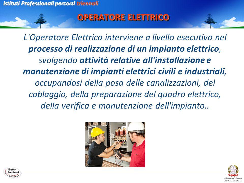 OPERATORE ELETTRICO L'Operatore Elettrico interviene a livello esecutivo nel processo di realizzazione di un impianto elettrico, svolgendo attività re