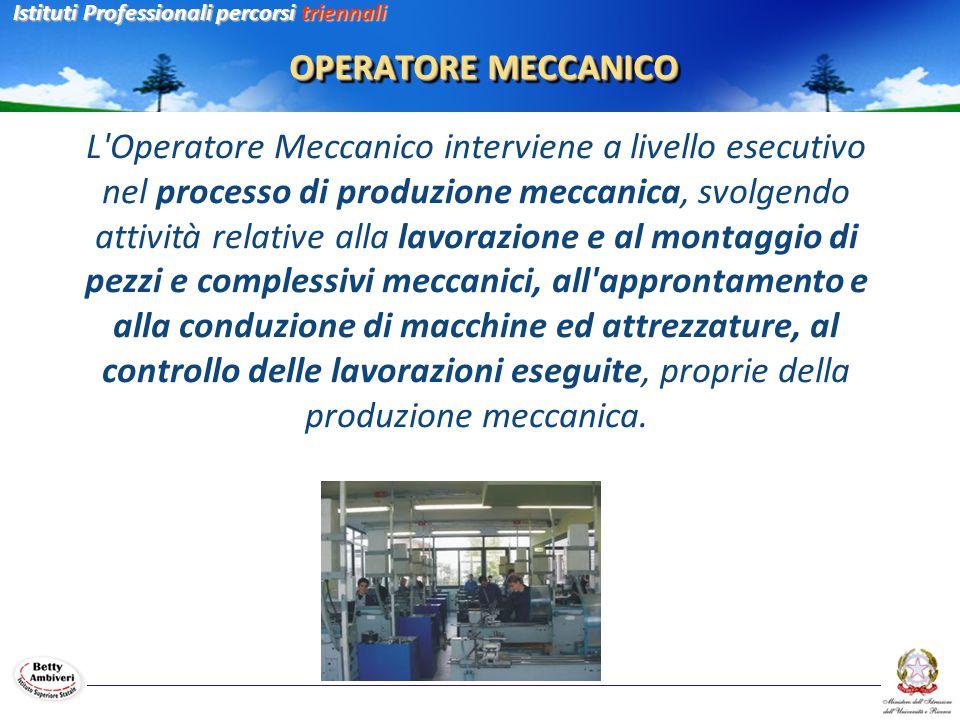 OPERATORE MECCANICO L'Operatore Meccanico interviene a livello esecutivo nel processo di produzione meccanica, svolgendo attività relative alla lavora
