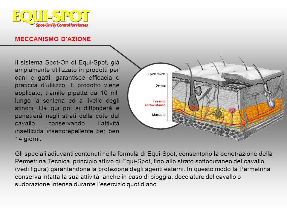 MECCANISMO D'AZIONE Il sistema Spot-On di Equi-Spot, già ampiamente utilizzato in prodotti per cani e gatti, garantisce efficacia e praticità d'utiliz