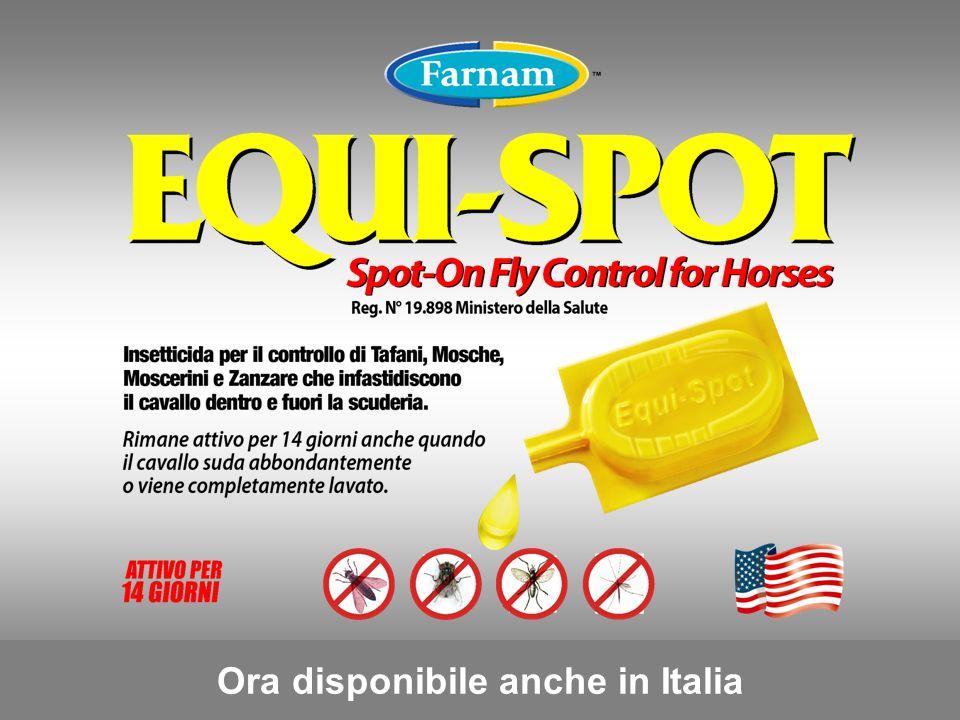 Ora disponibile anche in Italia