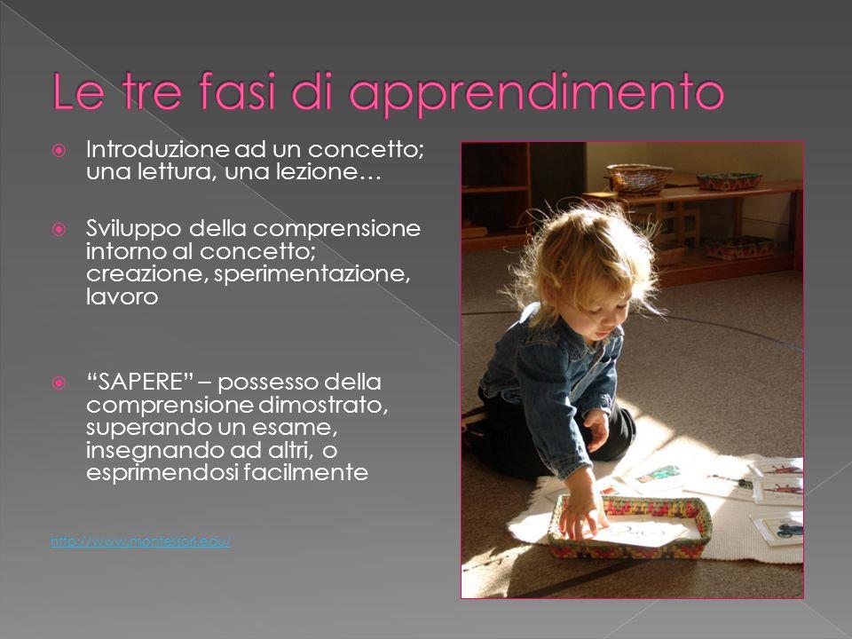 """ Introduzione ad un concetto; una lettura, una lezione…  Sviluppo della comprensione intorno al concetto; creazione, sperimentazione, lavoro  """"SAPE"""