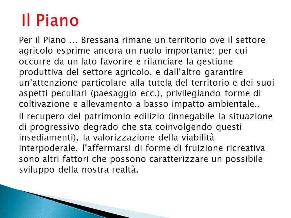 Il Piano Per il Piano … Bressana rimane un territorio ove il settore agricolo esprime ancora un ruolo importante: per cui occorre da un lato favorire