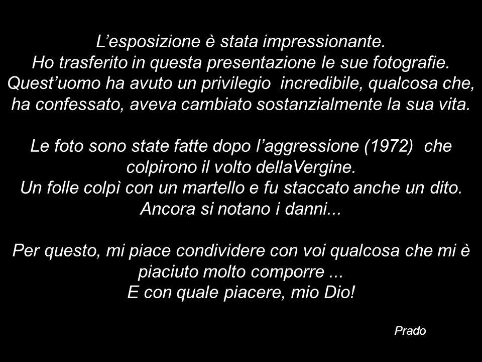 Michelangelo (a soli 23 anni) Era tanto innamorato di questa sua prima grande opera scultorea, che incise il suo nome nella fascia che attraversa il s