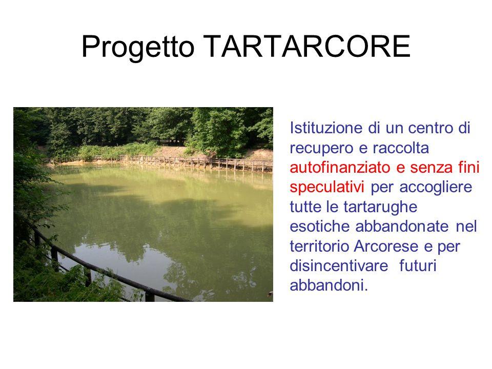 Progetto TARTARCORE Istituzione di un centro di recupero e raccolta autofinanziato e senza fini speculativi per accogliere tutte le tartarughe esotich