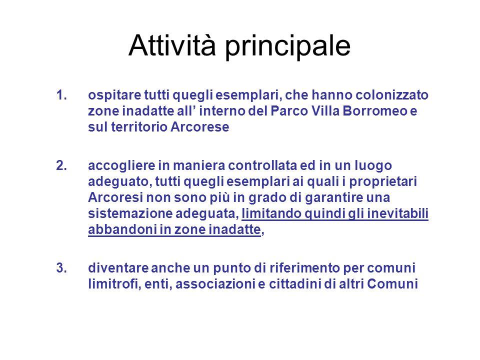 Attività principale 1.ospitare tutti quegli esemplari, che hanno colonizzato zone inadatte all' interno del Parco Villa Borromeo e sul territorio Arco
