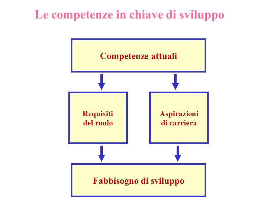 Competenze attuali Requisiti del ruolo Aspirazioni di carriera Fabbisogno di sviluppo Le competenze in chiave di sviluppo
