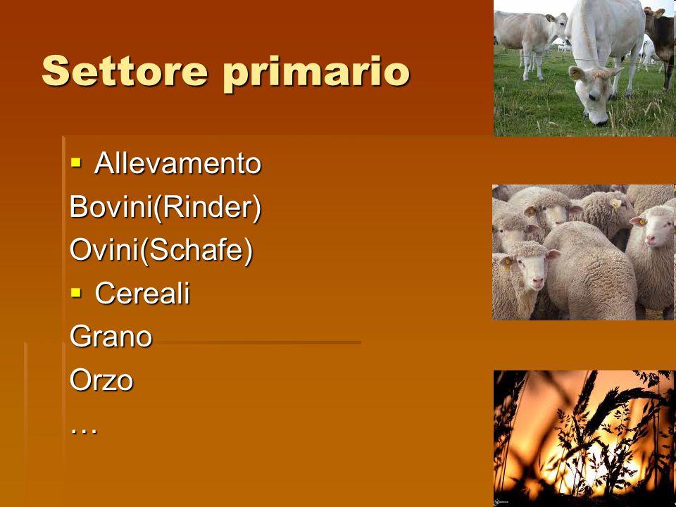 Settore primario  Allevamento Bovini(Rinder)Ovini(Schafe)  Cereali GranoOrzo…