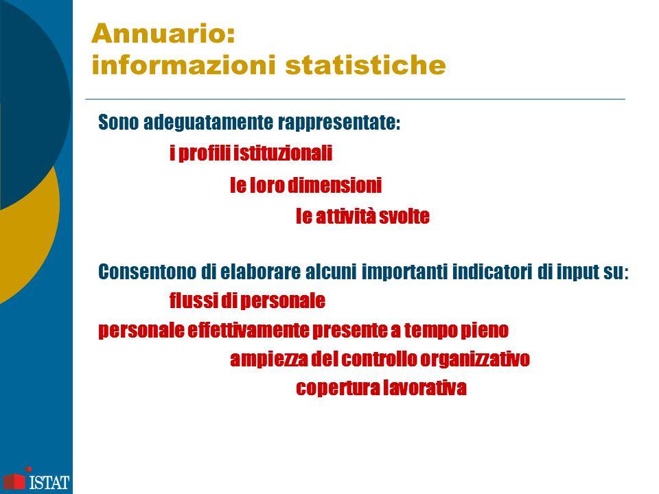 Annuario: informazioni statistiche Sono adeguatamente rappresentate: i profili istituzionali le loro dimensioni le attività svolte Consentono di elabo