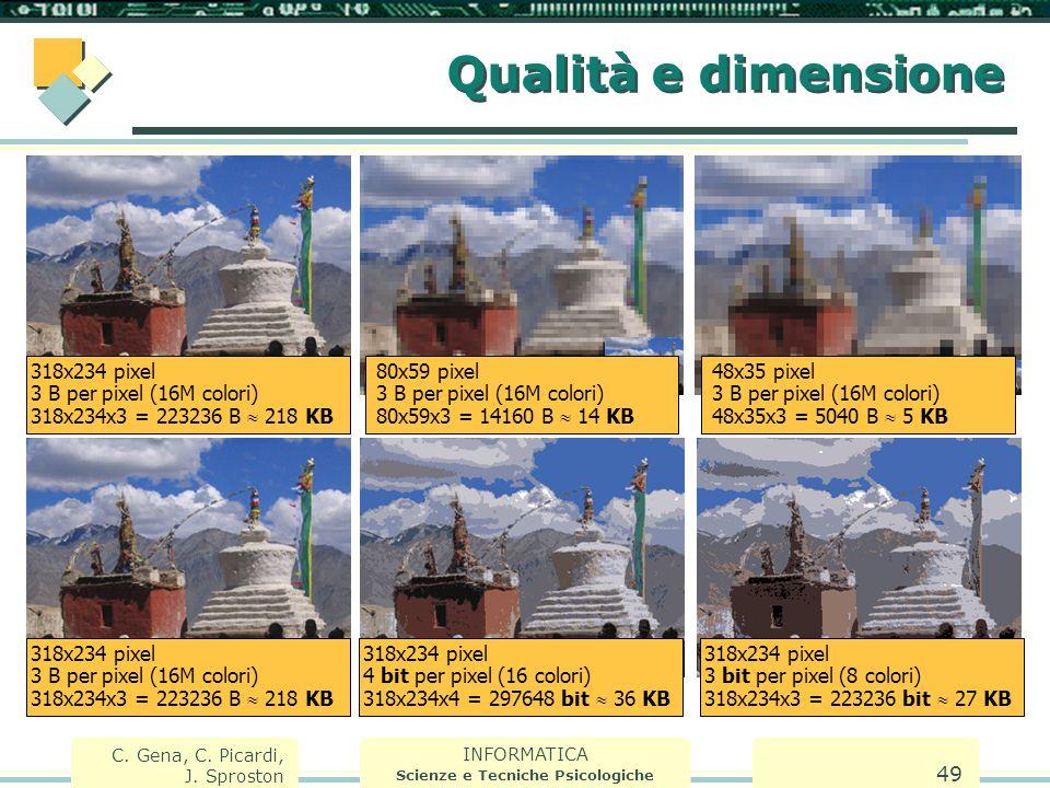 INFORMATICA Scienze e Tecniche Psicologiche C. Gena, C. Picardi, J. Sproston 49 Qualità e dimensione 318x234 pixel 3 B per pixel (16M colori) 318x234x