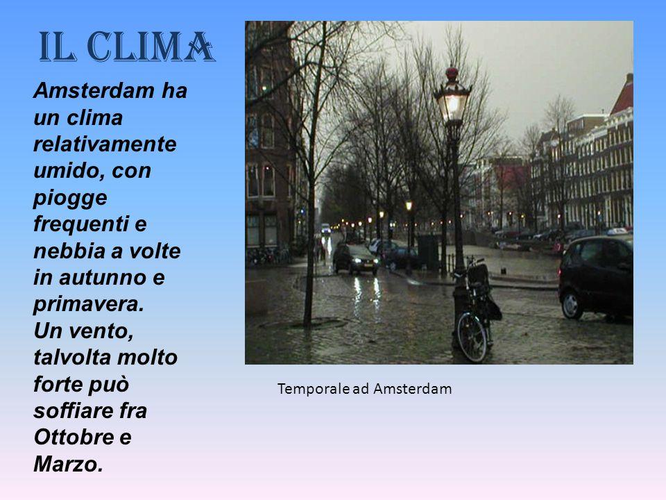 Il clima Amsterdam ha un clima relativamente umido, con piogge frequenti e nebbia a volte in autunno e primavera. Un vento, talvolta molto forte può s