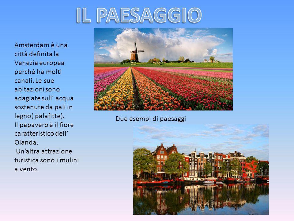 Amsterdam è una città definita la Venezia europea perché ha molti canali. Le sue abitazioni sono adagiate sull' acqua sostenute da pali in legno( pala