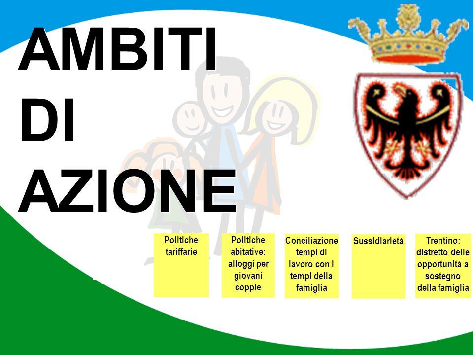 Politiche tariffarie Politiche abitative: alloggi per giovani coppie Conciliazione tempi di lavoro con i tempi della famiglia Trentino: distretto dell