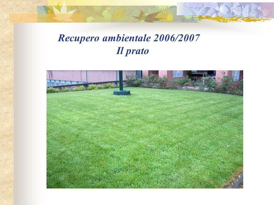 Recupero ambientale 2006/2007 Il prato