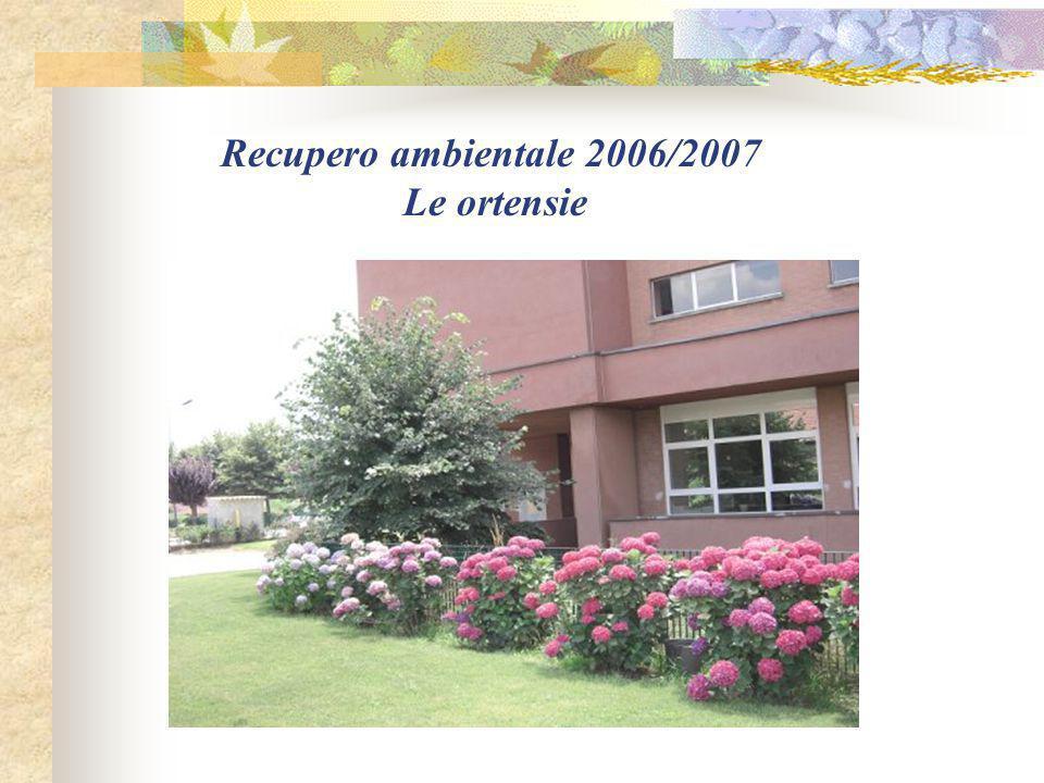 Recupero ambientale 2006/2007 Le ortensie