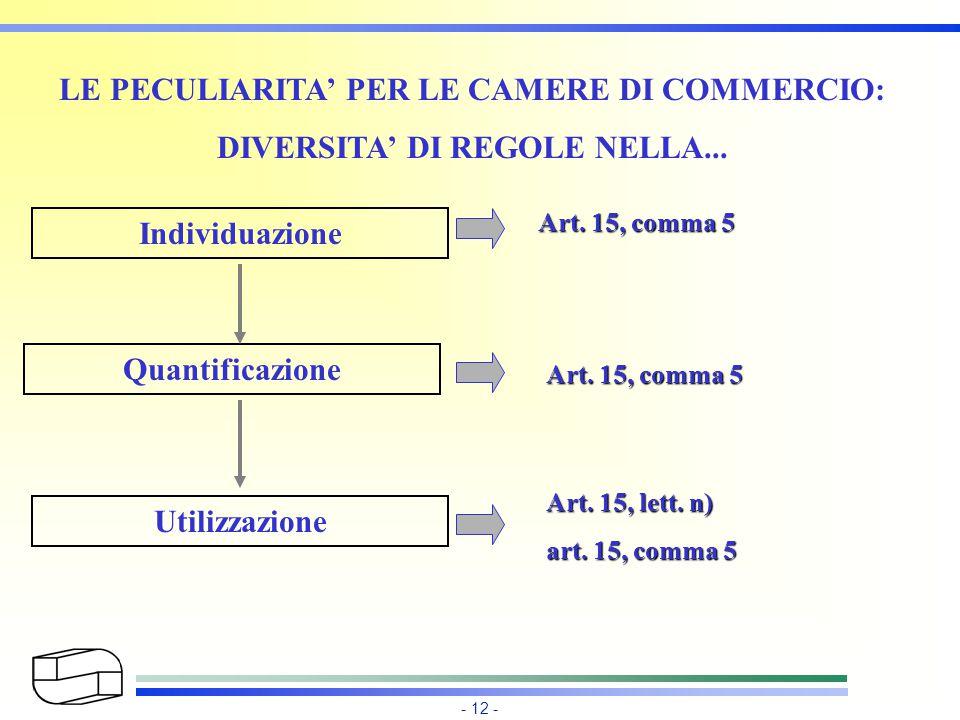 - 12 - LE PECULIARITA' PER LE CAMERE DI COMMERCIO: DIVERSITA' DI REGOLE NELLA... Individuazione Quantificazione Utilizzazione Art. 15, comma 5 Art. 15
