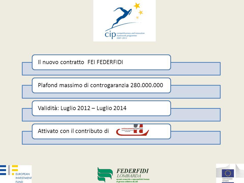 Il contratto FEI CIP 2008 – 2011 DATI AL 30 GIUGNO 2012 IL PORTAFOGLIO