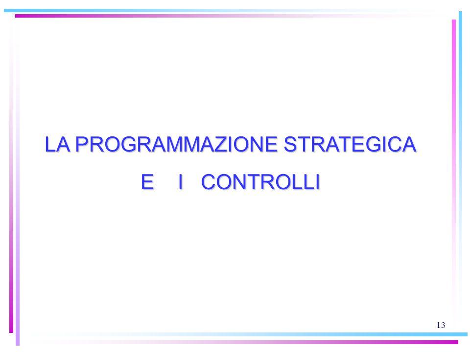 13 LA PROGRAMMAZIONE STRATEGICA E I CONTROLLI