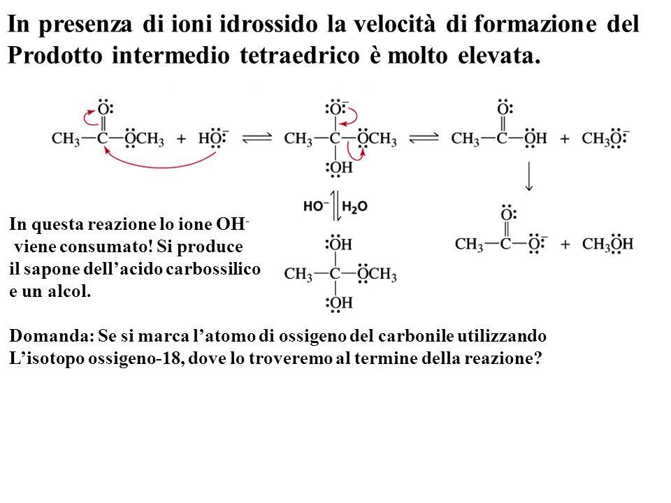 In presenza di ioni idrossido la velocità di formazione del Prodotto intermedio tetraedrico è molto elevata. In questa reazione lo ione OH - viene con