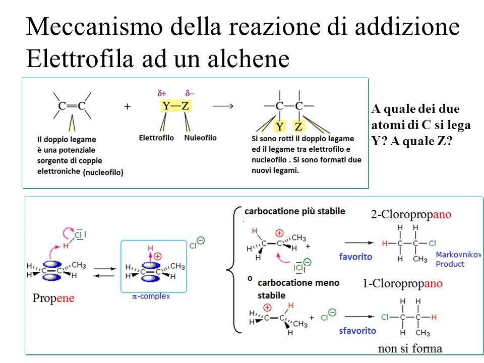 Meccanismo della reazione di addizione Elettrofila ad un alchene A quale dei due atomi di C si lega Y? A quale Z?