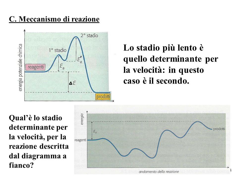 3 Lo stadio più lento è quello determinante per la velocità: in questo caso è il secondo. C. Meccanismo di reazione Qual'è lo stadio determinante per