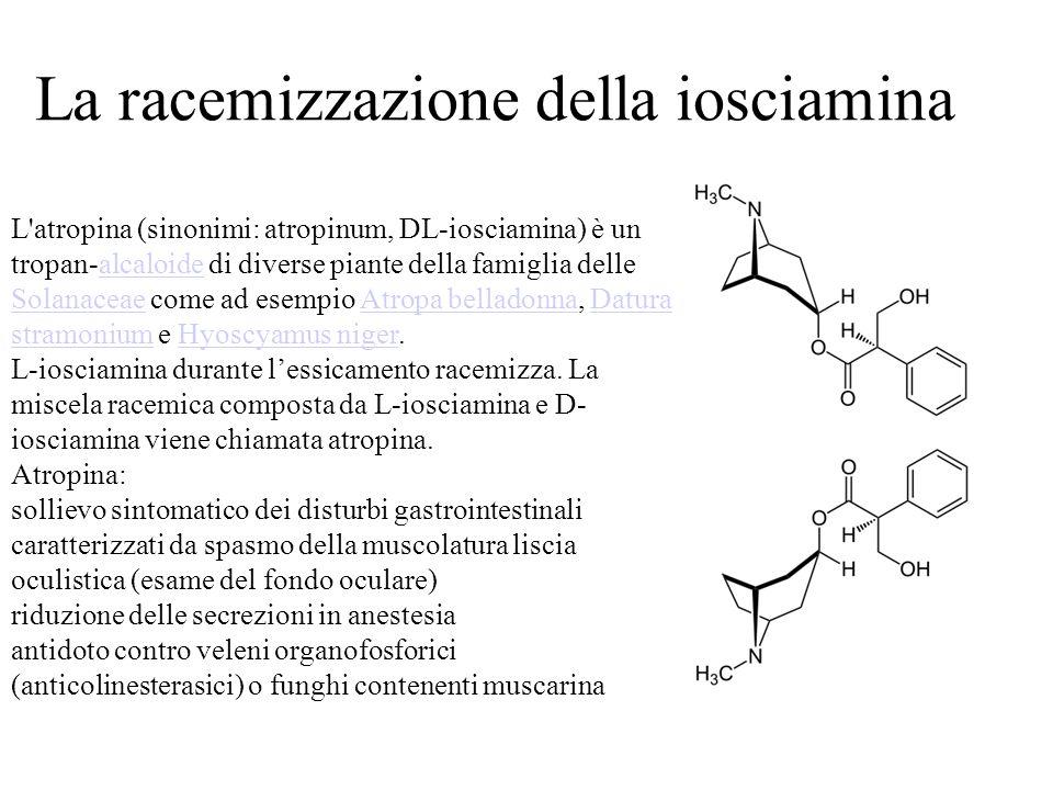 L atropina (sinonimi: atropinum, DL-iosciamina) è un tropan-alcaloide di diverse piante della famiglia delle Solanaceae come ad esempio Atropa belladonna, Datura stramonium e Hyoscyamus niger.alcaloide SolanaceaeAtropa belladonnaDatura stramoniumHyoscyamus niger L-iosciamina durante l'essicamento racemizza.