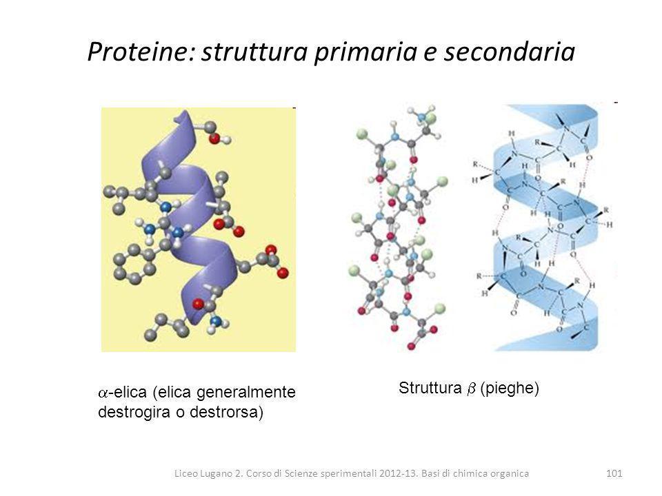 Liceo Lugano 2. Corso di Scienze sperimentali 2012-13. Basi di chimica organica101 Proteine: struttura primaria e secondaria  -elica (elica generalme