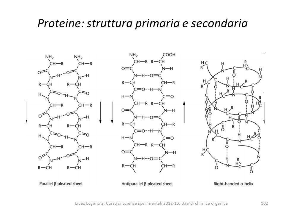 Liceo Lugano 2. Corso di Scienze sperimentali 2012-13. Basi di chimica organica102 Proteine: struttura primaria e secondaria