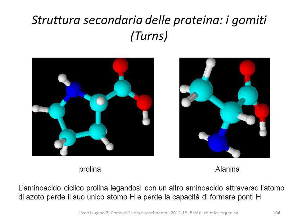 Liceo Lugano 2. Corso di Scienze sperimentali 2012-13. Basi di chimica organica104 Struttura secondaria delle proteina: i gomiti (Turns) L'aminoacido