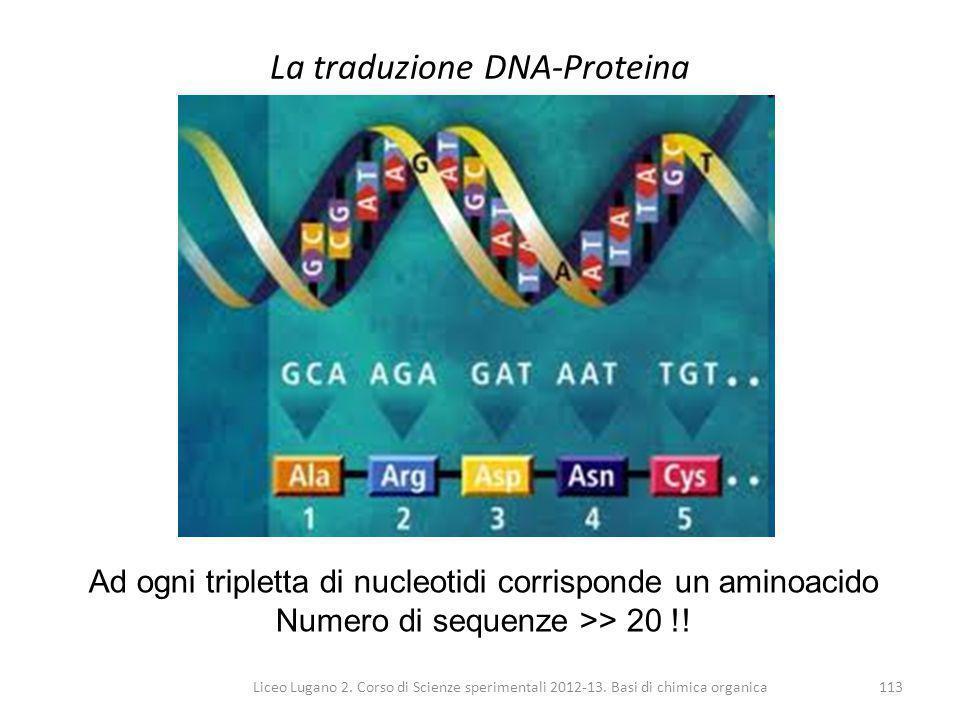 Liceo Lugano 2. Corso di Scienze sperimentali 2012-13. Basi di chimica organica113 La traduzione DNA-Proteina Ad ogni tripletta di nucleotidi corrispo