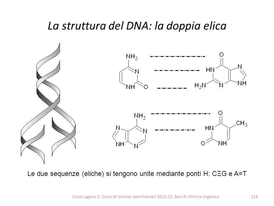 Liceo Lugano 2. Corso di Scienze sperimentali 2012-13. Basi di chimica organica114 La struttura del DNA: la doppia elica Le due sequenze (eliche) si t