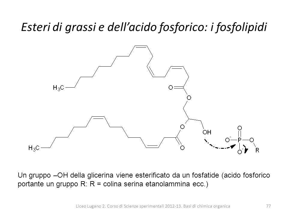 Liceo Lugano 2. Corso di Scienze sperimentali 2012-13. Basi di chimica organica77 Esteri di grassi e dell'acido fosforico: i fosfolipidi Un gruppo –OH