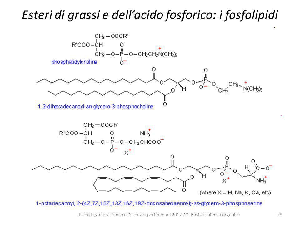 Liceo Lugano 2. Corso di Scienze sperimentali 2012-13. Basi di chimica organica78 Esteri di grassi e dell'acido fosforico: i fosfolipidi