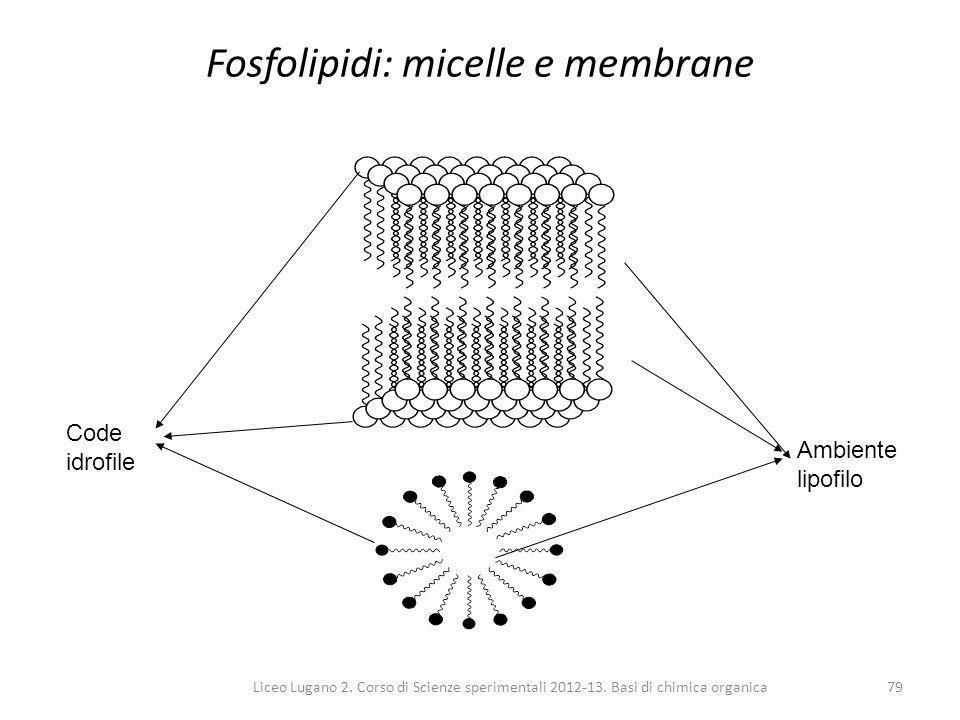 Liceo Lugano 2. Corso di Scienze sperimentali 2012-13. Basi di chimica organica79 Fosfolipidi: micelle e membrane Ambiente lipofilo Code idrofile