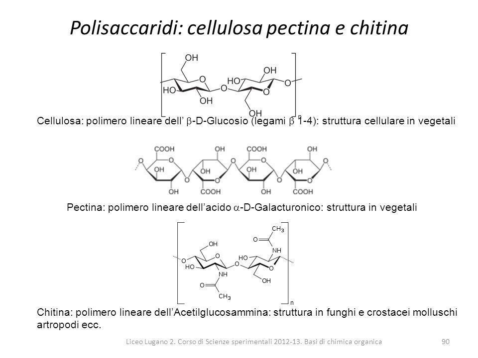 Liceo Lugano 2. Corso di Scienze sperimentali 2012-13. Basi di chimica organica90 Polisaccaridi: cellulosa pectina e chitina Chitina: polimero lineare