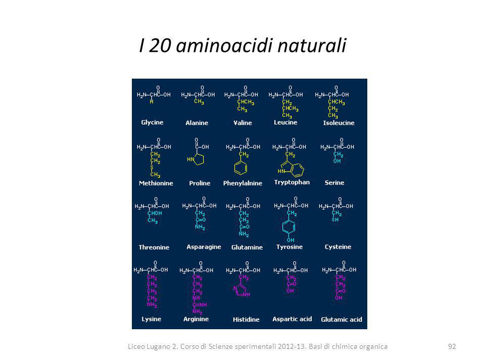 Liceo Lugano 2. Corso di Scienze sperimentali 2012-13. Basi di chimica organica92 I 20 aminoacidi naturali