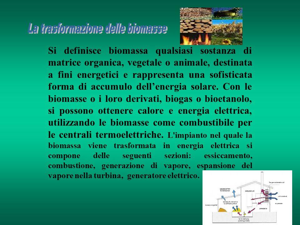 Si definisce biomassa qualsiasi sostanza di matrice organica, vegetale o animale, destinata a fini energetici e rappresenta una sofisticata forma di a