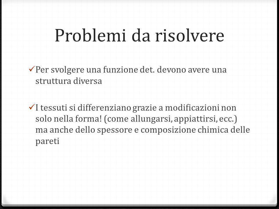 Problemi da risolvere Per svolgere una funzione det.