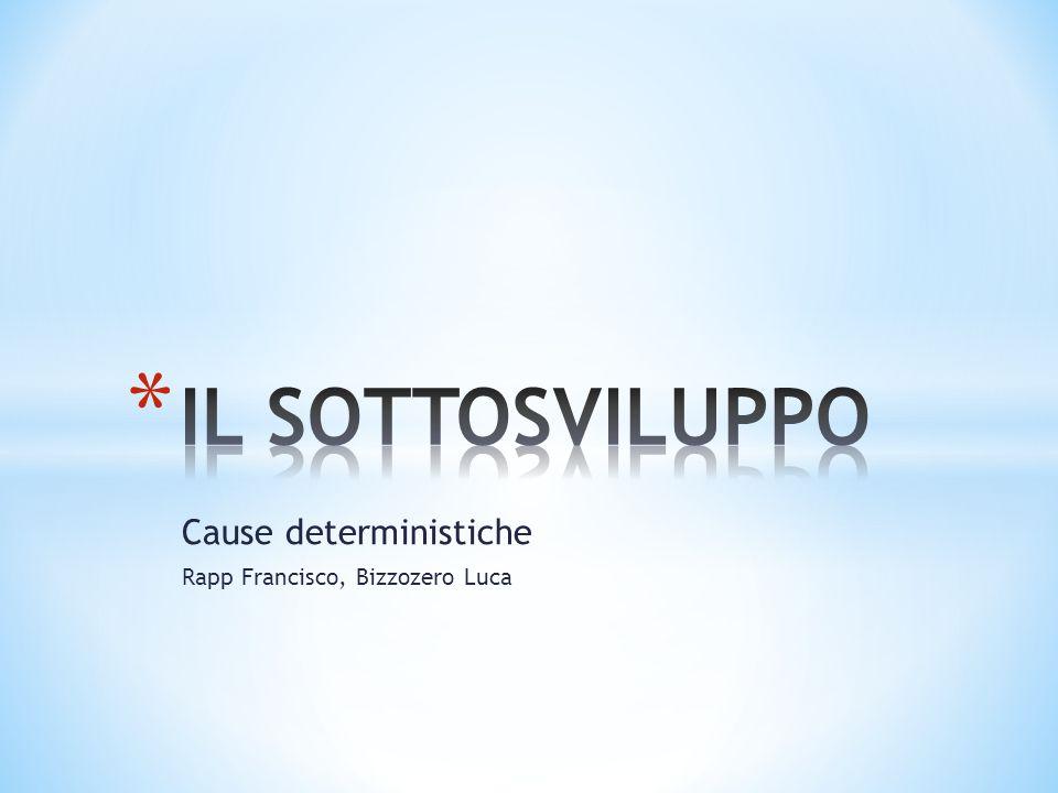 INDICE - Introduzione - Definizione sottosviluppo - Cause interne - Cause esterne - Conclusioni
